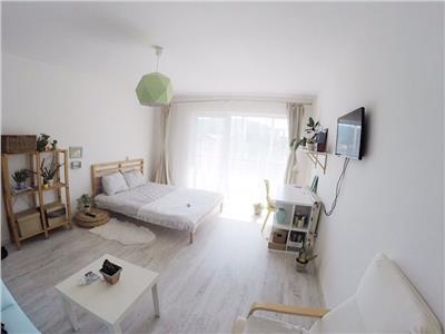 Apartament cu o camera la cheie zona muzeul Apei