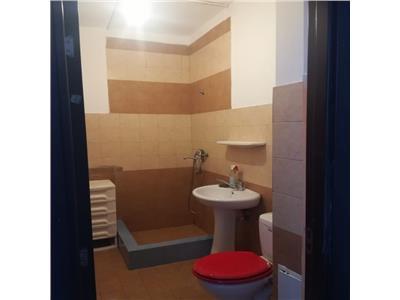 Apartament cu 1 camera in Floresti
